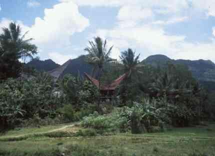 Reisverslag Indonesië: Java, Bali & Sulawesi