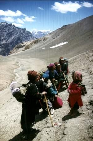 Trektocht door Ladakh (India)